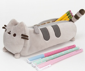 pencil case and pusheen image