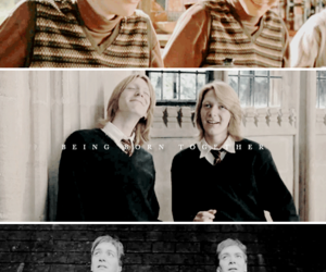 harry potter, brothers, and hp image