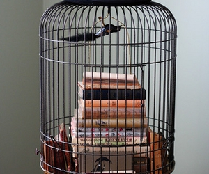 cages image