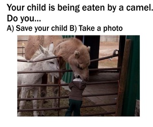 funny and kid image