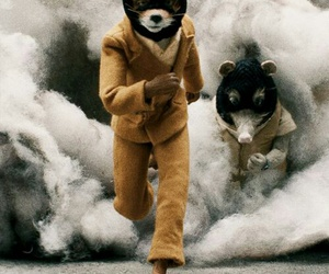 movie, opossum, and smoke image