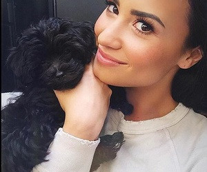 demi lovato, demi, and dog image