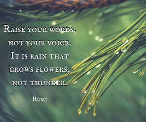 inspirational, quotes, and Rumi image