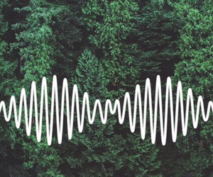 arctic monkeys and forest image
