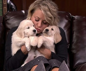 kaley cuoco, animal, and dogs image
