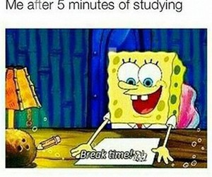 spongebob, funny, and studying image
