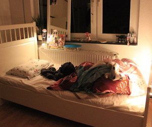 bed room, chilli, and room image
