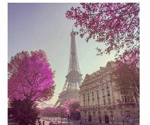 paris, amazing, and france image