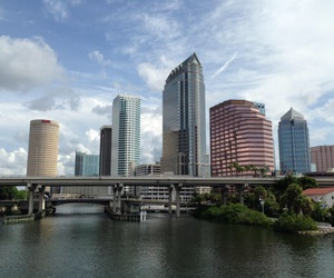 beautiful, photography, and tampa image