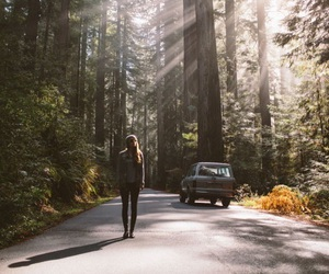 forest, happiness, and woods image