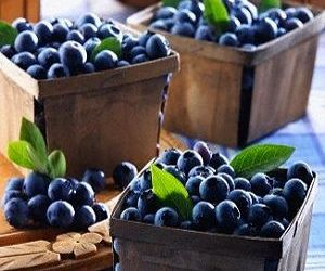 blueberry and fruit image