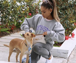 ariana grande, dog, and arianagrande image