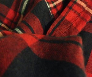 red, fall, and flannel image