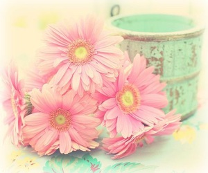pastels and shabby chic image