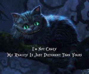 cat, crazy, and alice in wonderland image