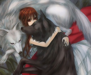 vampire knight, anime, and wolf image
