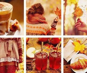 🍂 and 🍁 image