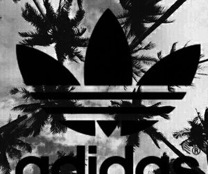adidas, blackandwhite, and fashion image