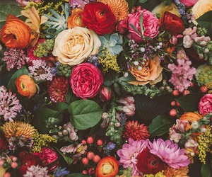 background, bouquet, and floral image