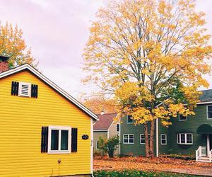 yellow and house image