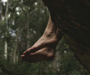 feet, forest, and green image