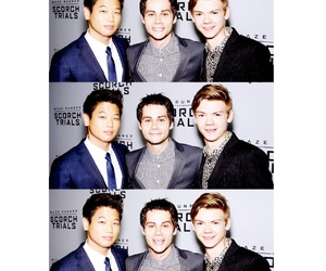 cast, Hot, and the maze runner image