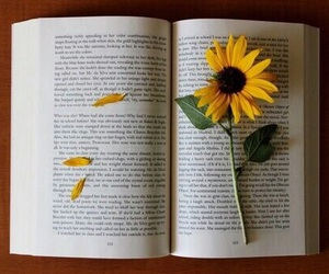 book, flowers, and sunflower image
