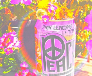 drink, flowers, and peace image