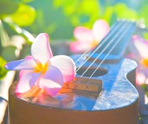 flowers, filter, and guitar image