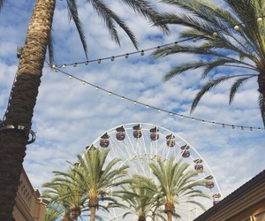 summer, sky, and palm trees image