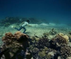 music, ocean, and sea image