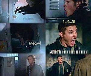 dean, spn, and winchesters image