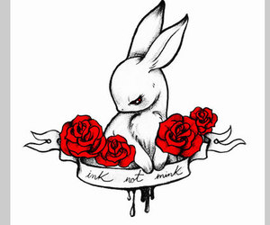design, rabbit, and rose image
