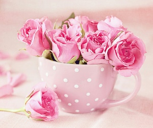 rose, pink, and cup image