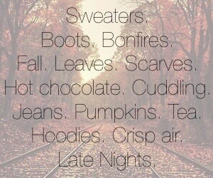 boots, fall, and sweaters image