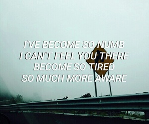 Lyrics, NUMB, and song image
