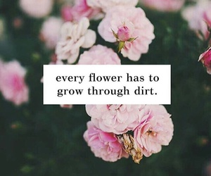 flowers, quote, and life image