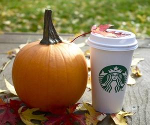 pumpkin, starbucks, and autumn image