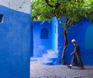 blue, morocco, and tree image