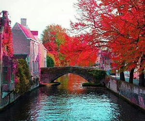 autumn, pink, and travel image