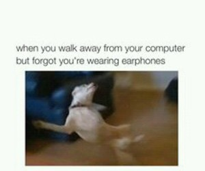funny, tumblr, and earphones image