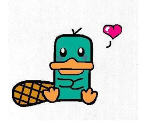 perry and heart image