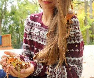 fall, tumblr, and leaves image