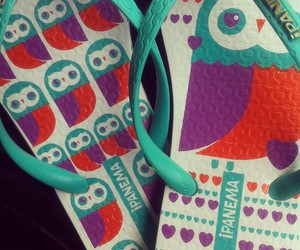 flip flop, ipanema, and owl image