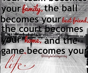 life, volleyball, and family image
