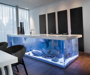 kitchen, aquarium, and home image