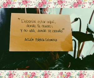 cartas, amor, and frases image