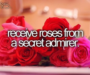 roses, before i die, and red image