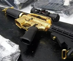 gold and gun image