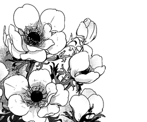 black and white, monochrome, and bloom image